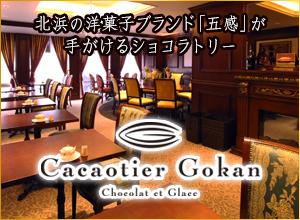 Cacaotier Gokan